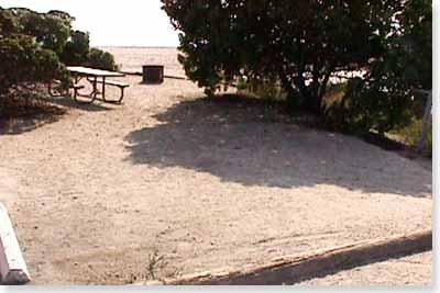 campsite #37 looking in