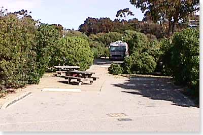 campsite #65 looking in