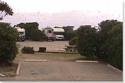 campsite #110 looking in