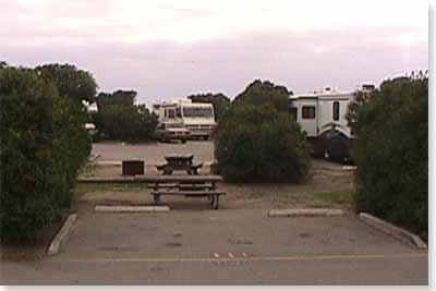 campsite #111 looking in