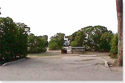 campsite #113 looking in