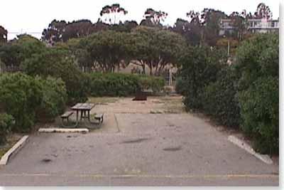 campsite #115 looking in