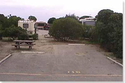 campsite #116 looking in