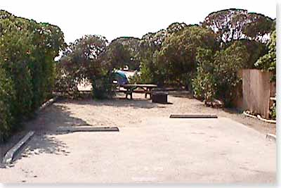 campsite #118 looking in