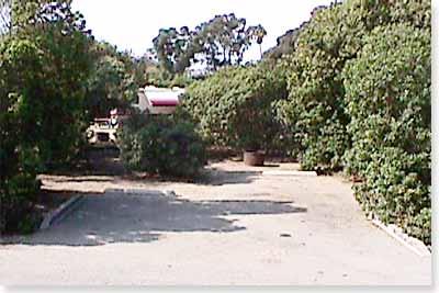 campsite #120 looking in