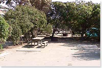campsite #121 looking in